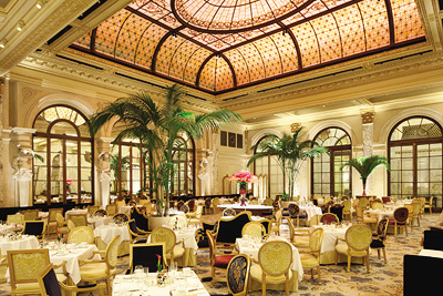 Contribution towards Dining at The Palm Court